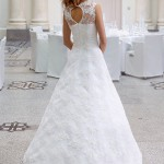 Brudekjole Nifea med skøn blonderyg.